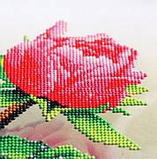Частичная алмазная вышивка — идеальный вариант для новичков и детского хобби