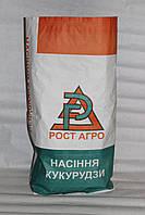 Семена кукурузы ДН Аджамка