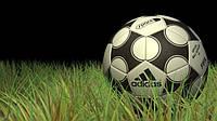 Мячи футбольные и другие Адидас