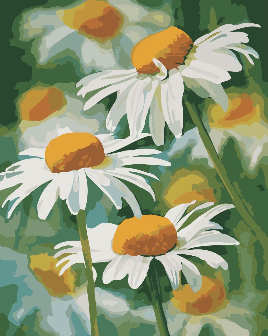 Художественный творческий набор, картина по номерам Нежные ромашки, 40x50 см, «Art Story» (AS0341)