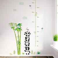 Интерьерная наклейка для измерения роста ребенка Панда
