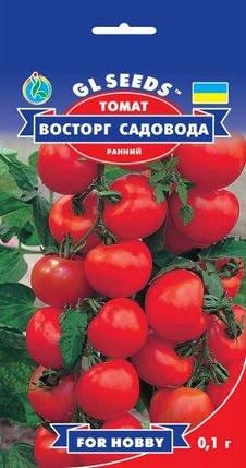 Томат Восторг садовода, пакет 0,1г - Семена томатов, фото 2