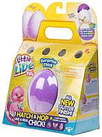 Интерактивный  Цыпленок в яйце сюрприз Little Live Pets S3 Chick Single Pack