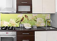 Кухонный фартук Птицы (Пташки), (полноцветная фотопечать, наклейка на стеновую панель для кухни, природа)