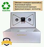 Инкубатор Тандем mini 60 термокабель на 60 куриных яиц, фото 10