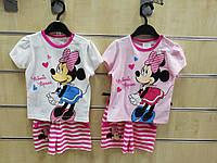 Комплект 2 в 1 для девочек оптом, Disney, 68-86 мес.,  № JTSET91049