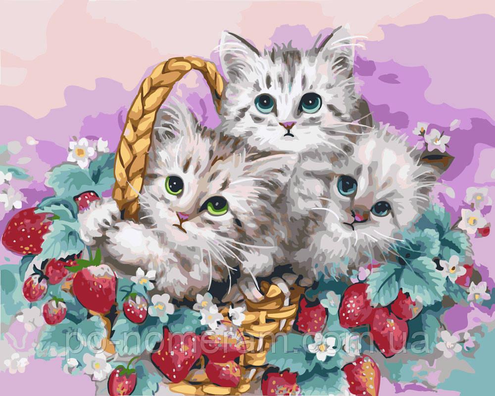 Раскраска для взрослых Корзина с котятами (BK-GX4129) 40 х ...