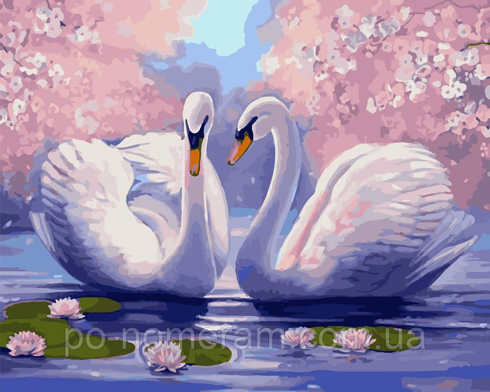 Картина за номерами Лебедина ніжність (BK-GX9009) 40 х 50 см (Без коробки)
