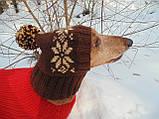Шапка для собаки,шапка для таксы,одежда для домашних животных, фото 6