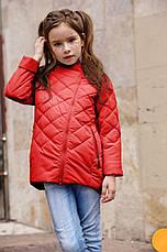 Детская куртка на девочку весна - осень Мия NUI VERY (нью вери) , фото 3