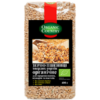 Зерно пшеницы твердых сортов для проращивание Organic country, 400 г