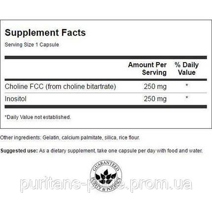 Холин & Инозитол, Choline & Inositol, Swanson, 250/250 мг, 250 капсул, фото 2