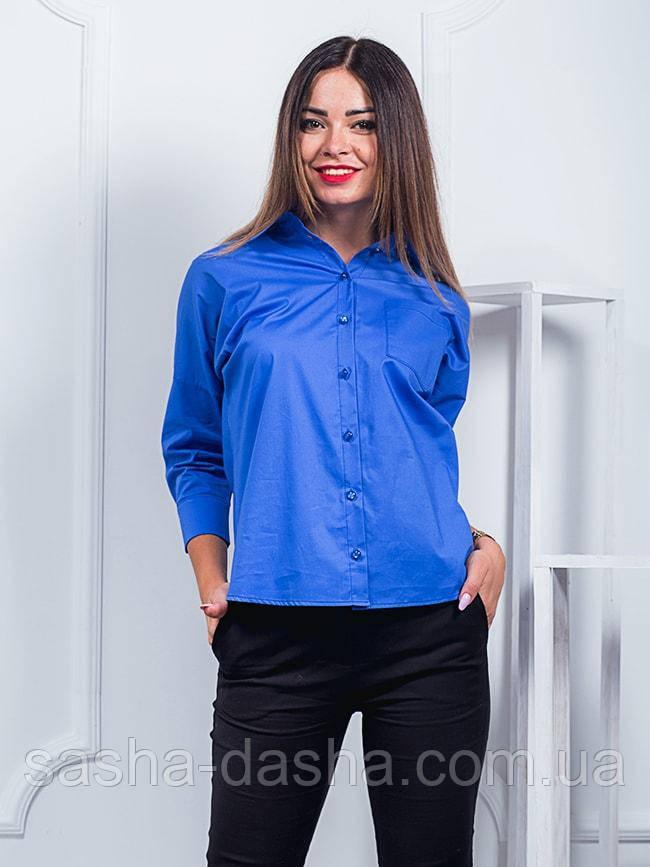 Блузка строгая с рукавами три четверти. Рубашка-блузка женская.