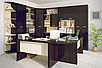 Шкаф для одежды 50 Офис Летро , фото 3