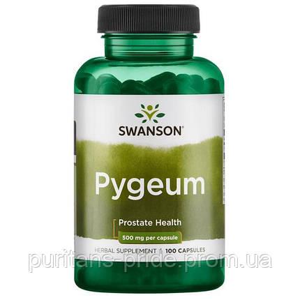 Поддержка здоровье простаты, Пигеум Экстракт,  Pygeum, Swanson, 500 мг, 100 капсул, фото 2