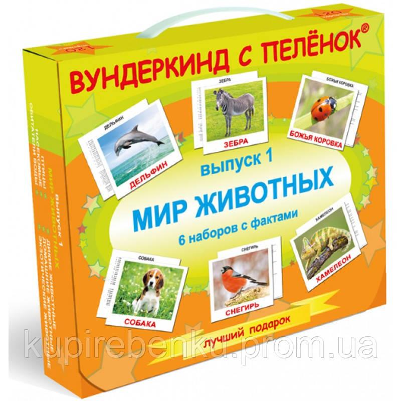 """Подарочный н-р №1 """"Мир животных"""",  русский, ламинация, методика Глена Домана"""