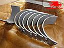 Вкладыши шатунные МТЗ 80, 82 Н1, двигатель Д 245 (пр-во ЗПС, г.Тамбов). Ціна з ПДВ, фото 3