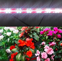 Фитолампа для цветов, зелени 1,2м 16Вт (2красных:2 белых)