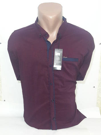 67b137af0255 Рубашка Recobar: продажа, цена в Запорожье. рубашки мужские от ...