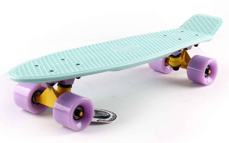 Скейт Пенни борд Penny Board Пенні Fish Skateboards 22.5 Pastel Mint - Мятный 57 см