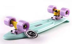 Скейт Пенни борд Penny Board Пенні Fish Skateboards 22.5 Pastel Mint - Мятный 57 см, фото 2