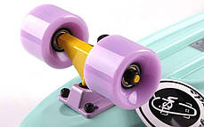 Скейт Пенни борд Penny Board Пенні Fish Skateboards 22.5 Pastel Mint - Мятный 57 см, фото 3