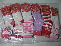 Носки Bol Dog для девочек, размеры 24/27.27/31. 31-36