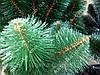 """Сосна штучна """"Смарагдово-зелена"""" 2.3 м, фото 3"""