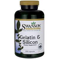 Желатин и кремний, Swanson, Gelatin & Silicon, 200 капсул