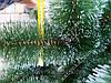"""Сосна искусственная """"Белые кончики"""" 2.3м // Сосна штучна / ялинка / Ель / Елка, фото 6"""