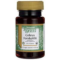 Форсколин, Swanson, Coleus Forskohlii, 500 мг, 30 капсул