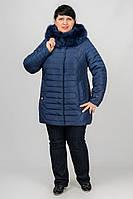 Зимняя куртка приталенного кроя Купава Разные цвета