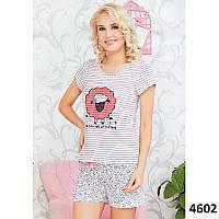 Комплект-двойка (футболка и шорты) Розовая овечка Pink Secret PK4602