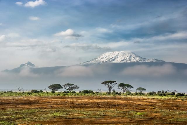 Купить натуральный кофе Арбика Кения для приготовления в турке, френч прессе, кофемашине