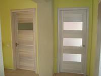 Шпонированный  дверной блок + доборка