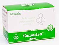 Camosten™ (Сантегра - Santegra) Камостен - биодоступный кальций и магний, с витамином Д, 14 пакетик, фото 1
