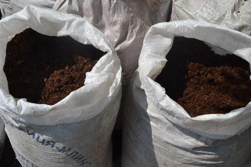 Торф Кислый 60 л Киев купить Торф верховой в мешках Торф кислый фасованный