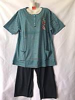 Пижама женская полубатальная в полоску размеры XL-5XL Серии