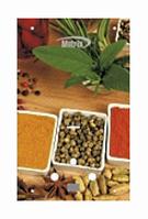 Водонагреватель газовый проточного типа MATRIX Spice (Специи)