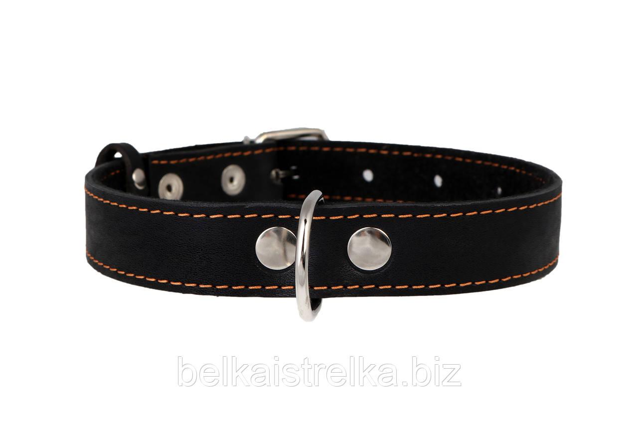 Ошейник для собак COLLAR 25мм/ 38-50см 02191, чёрный