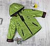 Весенние курточки детские для мальчиков, фото 6