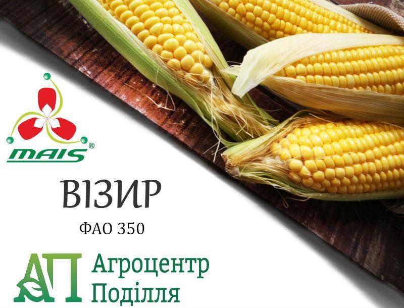Семена кукурузы ВИЗИР (ФАО 350) MAIS (бесплатная доставка от 10 п.о.!!!)