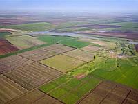 Об'єднані територіальні громади отримали у власність землі колишніх колективних с/г підприємств.