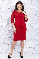 Трикотажное нарядное платье с гипюром 48-54 р ( красный, золото )