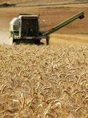 Услуги по обработке почвы, посеву и уборке урожая