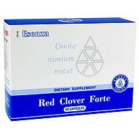 Red Clover Forte (Сантегра - Santegra) Красный клевер , Ред Кловер Форте - очищение организма, фото 1