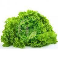 Семена салата 1гр сорт Малиновый шар