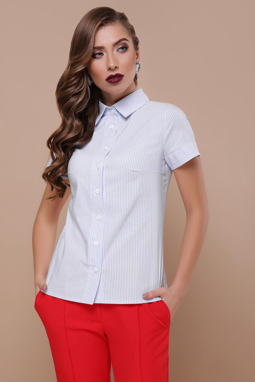 Классическая женская офисная рубашка в полоску с короткими рукавами блуза Рубьера к/р голубая