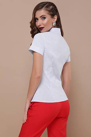Классическая женская офисная рубашка в полоску с короткими рукавами блуза Рубьера к/р голубая, фото 2