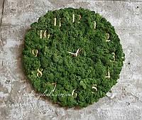 Часы настенные из мха от студии Зелёнка.